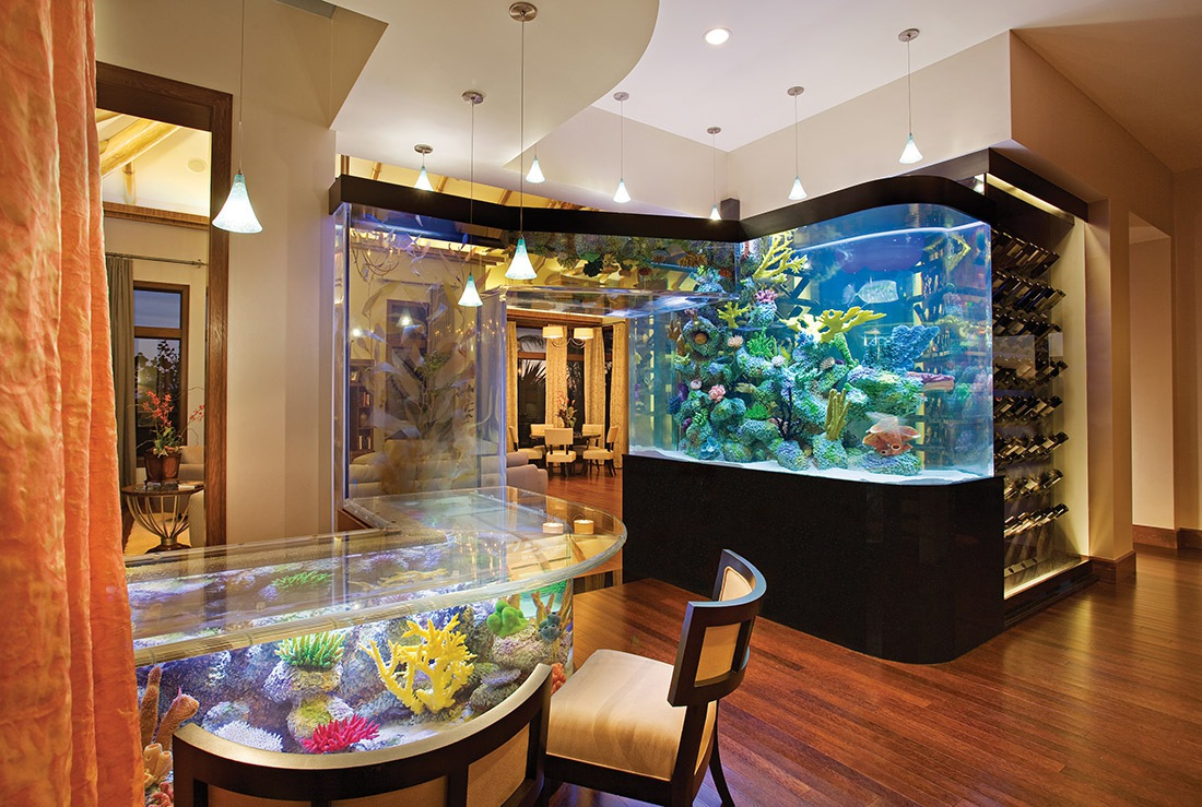 CALMING AQUARIUM WET BAR